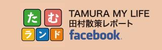tamura_tamuland_320_100